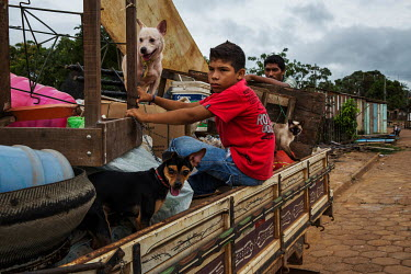 A boy sits on a truck loaded with the belongings and pets of a displaced family that used to live in a stilt house in Altamira but are being resettled in a new urban dwelling. They were forced to move...