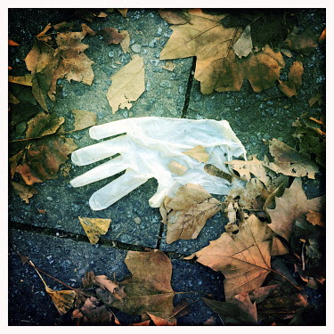 Discarded surgical gloves.