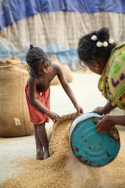 A child labourer helps to fill sacks a grain mill before she was able to stop labouring and attend school.