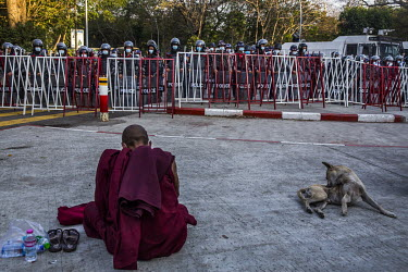 A Buddhist monk sits on the ground in front of riot police stood behind a barrier on University Avenue Road where a huge crowd has gathered to protest against the military dictatorship and demand the...