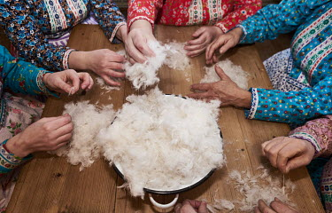 Women from the Chod folklore group prepare goose down for use as stuffing.