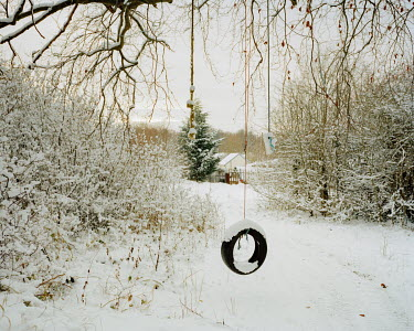 A rope swing in a snowy woodland in Coulsdon.