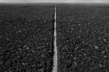 A stretch of the BR-319 highway that connects Manaus to Porto Velho. The paving of this 870 km road, which was one of President Jair Bolsonaro's promises during the presidential campaign, could lead t...