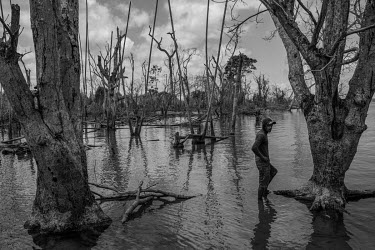 A riverbank dweller visits what remains of his house on an island in the Xingu River, which was flooded by the Belo Monte Dam's reservoir.