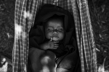 An indigenous Piraha baby sleeps in a hammock in a camp set up on the banks of the river Maici.
