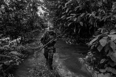 A member of the Specialized Inspection Group (GEF) , a part of IBAMA (Brazilian Institute of the Environment and Renewable Natural Resources), Brazil's environmental protection agency, searching for i...