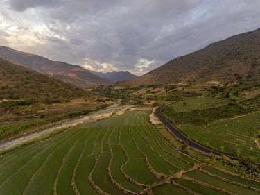 Terraced fields on a hillside in Montero.