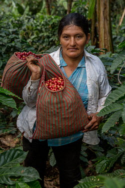 Felicita Castilla with a sack of coffee cherries harvested from the field where she grows Fair Trade coffee.