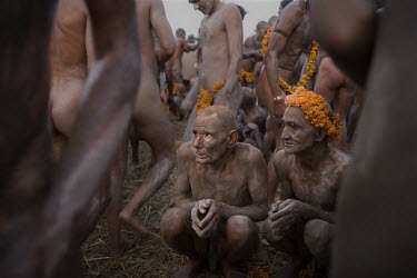 Group of Naga sadhus from Juna akhara (order) after taking a sacred bath in the Ganges River on 19 January 'Mouni Amavasya', New Moon Day of the Saints. One of the features of this 'mela' are Naga Sad...