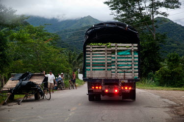 A truck loaded with lose bananas is driven along a road through Rio Frio.