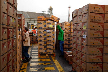 Workers stack boxes of Fair Trade bananas produced for Fyffes, an importer and distributor of tropical crops, at Santa Marta's port.