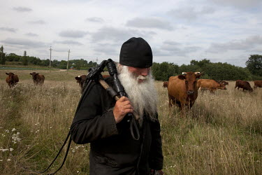 63 year old Orthodox monk Kirill working in a field with his cows.