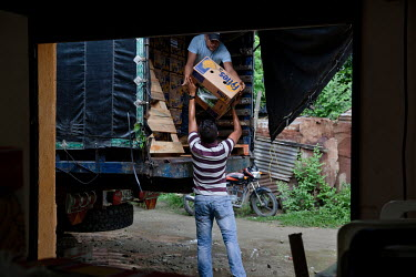 Boxes of bananas are loaded onto a truck at the Coobafrio Cooperative, a plantation supplying Fair Trade bananas to Fyffes, an importer and distributor of tropical crops.