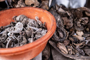 Dried chameleons and other reptiles and amphibians being sold at a traditional medicine store in Kejetia market (Kumasi Central Market). The traditional medicine industry is among the drivers of the i...