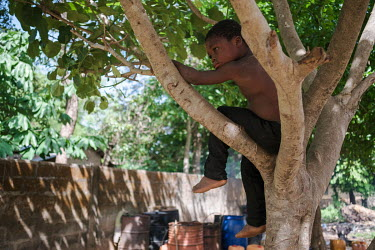 A child in a tree in the village of Koko.