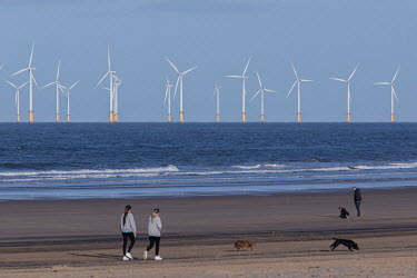 People walking dogs on a beach with the turbines of the offshore windfarm at Seaton Carew rising from the sea beyond. Hartlepool has always voted Labour, including in the last General Election, when...