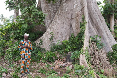 Raymond Hinnouhou Adokpo (77) is the guardian of a kapok tree (Ceiba petandra) said to be centuries old that towers above the village of Kogbome. Though the forest that once surrounded it has been all...