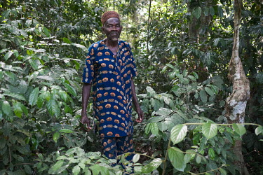 Sedogbo Mehounou (72) is a member of a village committee responsible for a small sacred Oro secret society forest grove in the village of Kotan. Local NGO GRABE Benin (Groupe de Recherche et d'Action...