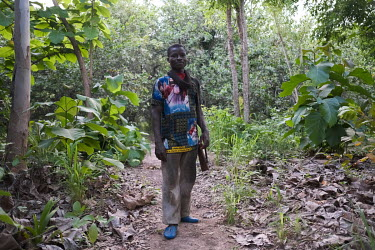 Mathieu, armed with his shotgun, in a cashew plantation near the village of Koko. He says that although he's university-educated, he's unable to find employment and so gets by with a combination of fa...