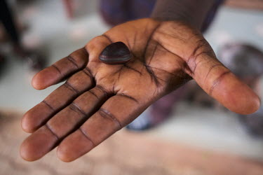 Mathieu Toviehou of NGO GRABE Benin (Groupe de Recherche et d'Action pour le Bien-Etre/ Research and Action Group for Well-Being) showing a seed from one of the plant species the organisation is worki...