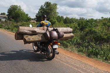 A man carrying logs on the back of his motorcycle. One of the highest population growth rates in the world means tremendous demand for wood for construction and cooking fuel. Combined with increasing...