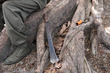 A machete and telescope are seen as Yaya Chabi Ota, an eco-guard, rest at the base of a tree on the edge of a sacred forest he protects in Kikele. The forest is home to approximately 30 white-thighed...