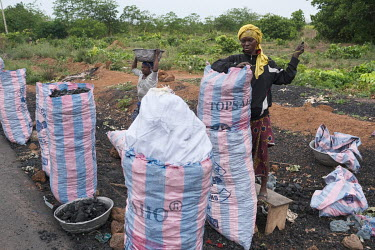 Women selling charcoal beside a highway. Over 90 percent of the nation's households are dependent on wood or charcoal for cooking. Together with a demand for agricultural land driven by one of the wor...