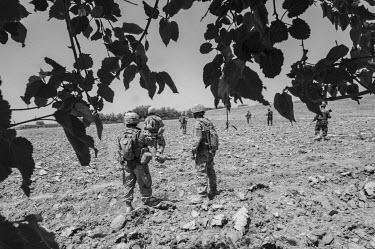 A group of US Marines on patrol walk through a ploughed field.