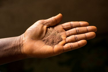 Kutugbalayi (as it is called in the Gbagyi language) or Kiriya (as it is called in the Hausa laguage) is a root used for stomach pain, fever and treating people attacked by witchcraft. The root is dis...
