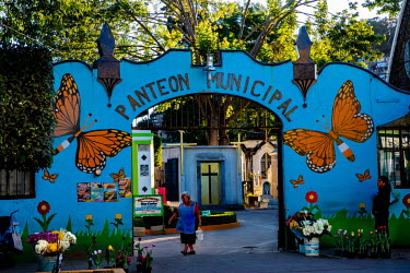 The entrance to the cemetery in the town of Zitacuaro, painted with monarch butterflies. Local tradition has it that the monarchs carry the spirits of the dead, especially as the monarchs arrive aroun...