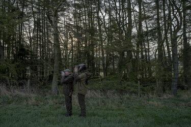 Kenny Horne (left), head Gamekeeper at the Teasses estate in Fife goes out in the early morning with his assistant Jordan to control foxes and deer. The Teasses Estate covers 1,100 acres, it organises...