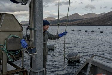 Mussel farmer Lawrie Byrne prepares to lay new rope in one of the mussel farms that he runs along with his brother Alan in Loch Eil. The UK's shellfish industry has been thrown into chaos post-Brexit...