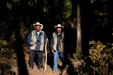 A patrol carried out by people from the local community, they monitor the forest and illegal logging in the Sierra Chincua monarch butterfly reserve.
