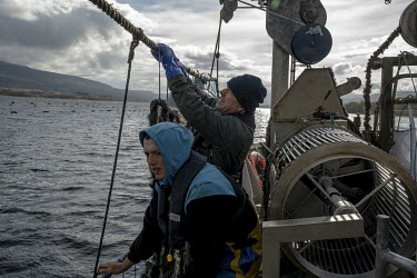 Lawrie Byrne (right) ties mussel ropes to a line in at their mussel farm on Loch Eil. The UK's shellfish industry has been thrown into chaos post-Brexit as only shellfish caught in Grade A waters can...