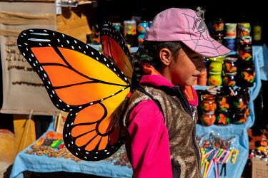 Monarch butterfly souvenirs for sale.
