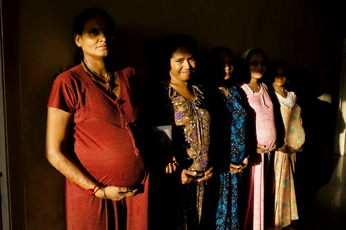 India's Surrogacy Industry