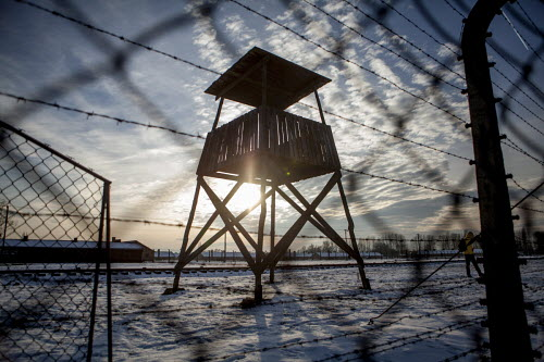 The Long Shadow of Auschwitz
