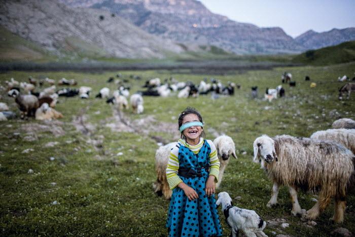 Iran's Last Nomads