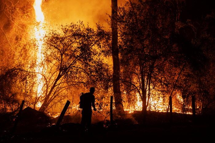 Pantanal Ablaze